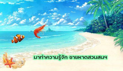 มาทำความรู้จัก ชายหาดสวนสนฯ